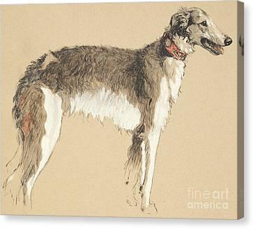 Greyhound Canvas Print - Borzoi, 1930 by Cecil Charles Windsor Aldin