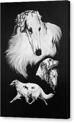 Canvas Print featuring the drawing Borzoi by Rachel Hames