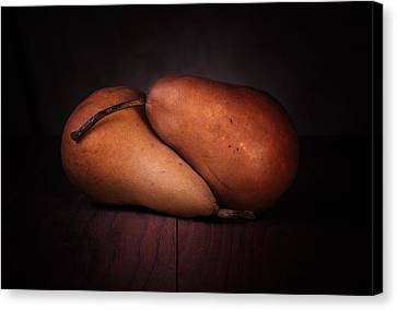 Bosc Pears Canvas Print by Tom Mc Nemar