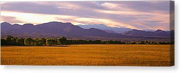 Bosque Del Apache National Wildlife Canvas Print by Panoramic Images