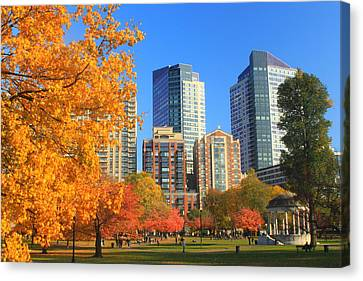 Boston Common In Autumn Canvas Print by John Burk