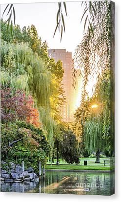 Boston Public Garden Sunrise Canvas Print