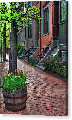 Boston South End Row Houses Canvas Print by Joann Vitali