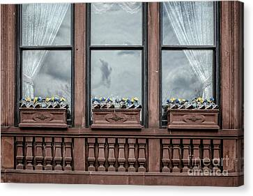 Boston Strong Window Boxes Canvas Print