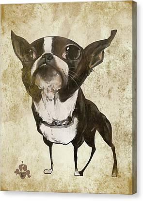 Canvas Print - Boston Terrier - Antique by John LaFree