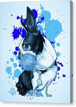 Canvas Print - Boston Terrier - Blue Paint Splatter by John LaFree