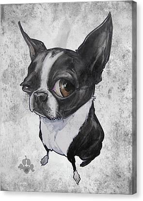 Caricature Canvas Print - Boston Terrier - Grey Antique by John LaFree