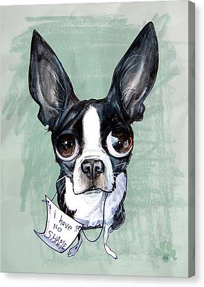 Canvas Print - Boston Terrier - I Have No Shame by John LaFree