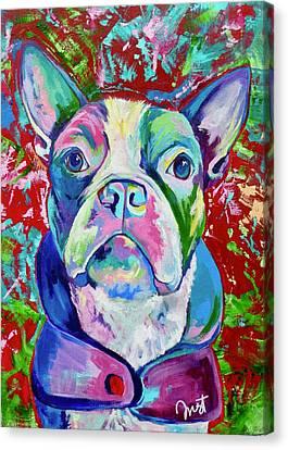 Boston Terrier Canvas Print