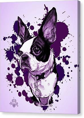 Canvas Print - Boston Terrier - Purple Paint Splatter by John LaFree