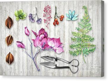 Nature Study Canvas Print - Botanica II Botanical Nature Study Flower, Leaf Seeds by Tina Lavoie