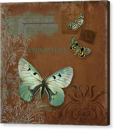 Botanica Vintage Butterflies N Moths Collage 4 Canvas Print by Audrey Jeanne Roberts