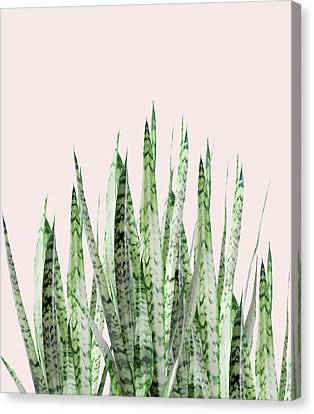 Botanical Balance Canvas Print