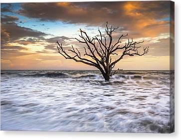 Botany Bay Edisto Island Sc Boneyard Beach Sunset Canvas Print by Dave Allen