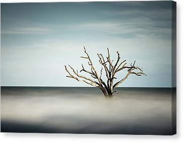 Botany Bay Canvas Print by Ivo Kerssemakers