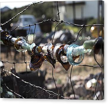 Bottle Fence Canvas Print by Annette Berglund