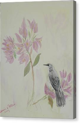 Bougainvillea And Mockingbird Canvas Print by Donna Walsh
