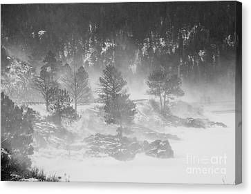 Boulder Canyon And Nederland Winter Landscape Canvas Print by James BO  Insogna