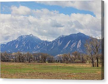 Canvas Print featuring the photograph Boulder Colorado Prairie Dog View  by James BO Insogna