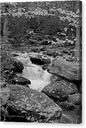 Boulder Creek Canvas Print by DigiArt Diaries by Vicky B Fuller