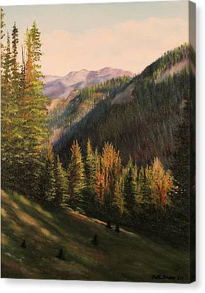 Boulder Pass Canvas Print by Patti Gordon