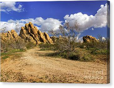 Boulders At Apple Valley Canvas Print by James Eddy