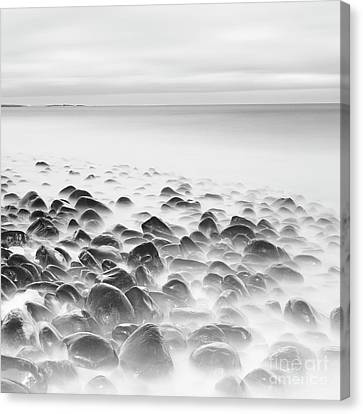 Boulders At Dunstanburgh Canvas Print by Tony Higginson