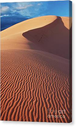 Coral Pink Sand Dunes Canvas Print - Boundless Dune Ll by Hideaki Sakurai
