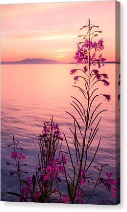 Canvas Print featuring the photograph Bouquet For A Sleeping Lady by Tim Newton