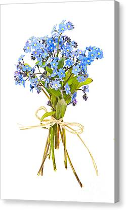Bouquet Of Forget-me-nots Canvas Print by Elena Elisseeva