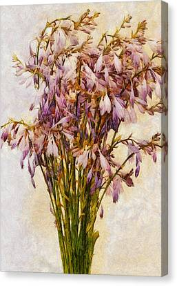 Bouquet Of Hostas Canvas Print