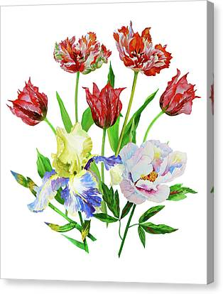 Bouquet With Tulips, Iris And Peony Canvas Print