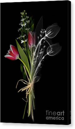 Bouquet X-ray Canvas Print by Ted Kinsman