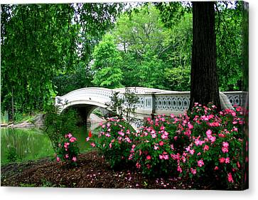 Bow Bridge In Springtime Canvas Print