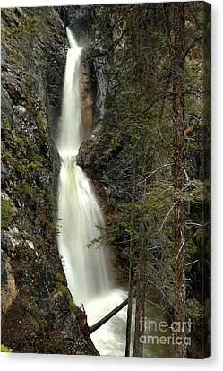 Bow Valley Silverton Falls Canvas Print by Adam Jewell