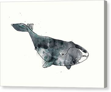 Bowhead Whale From Whales Chart Canvas Print by Amy Hamilton