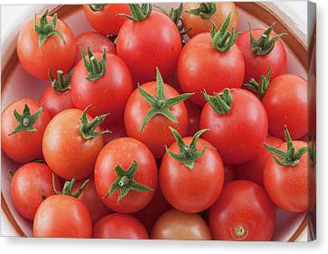 Canvas Print featuring the photograph Bowl Of Cherry Tomatoes by James BO Insogna