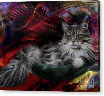 Bowl Of More Fur Canvas Print