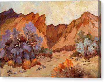 Box Canyon Canvas Print by Diane McClary