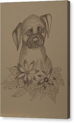 Working Dog Canvas Print - Boxer Pup 16-01 by Maria Urso