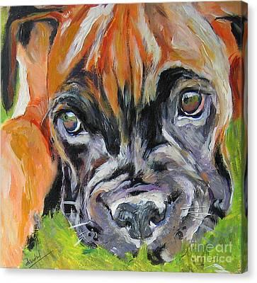 Boxer Pup Canvas Print by Debora Cardaci