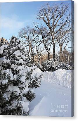 Boxing Day Canvas Print
