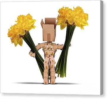Boxman Holding Large Bunches Of Daffodils Canvas Print