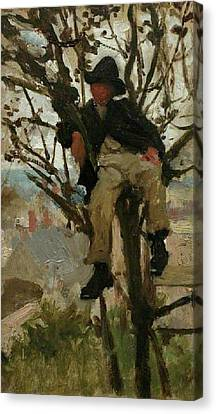 Canvas Print featuring the painting Boy In A Tree by Henry Scott Tuke
