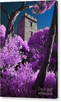 Boyd Tower 2 Canvas Print by Russ Brown