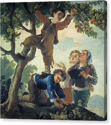 Boys Catching Fruit Canvas Print by Francisco Goya