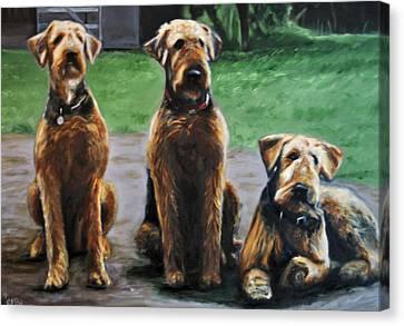 My Boys Canvas Print
