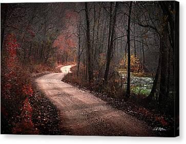 Boz Mill Road Canvas Print by Bill Stephens