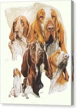 Bracco Italiano W/ghost Canvas Print by Barbara Keith