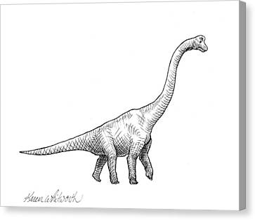 Canvas Print featuring the drawing Brachiosaurus Black And White Dinosaur Drawing  by Karen Whitworth